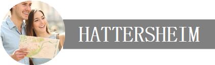 Deine Unternehmen, Dein Urlaub in Hattersheim Logo
